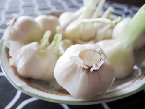Fresh garlic from the garden