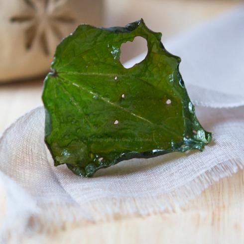 Kawakawa wafer leaf