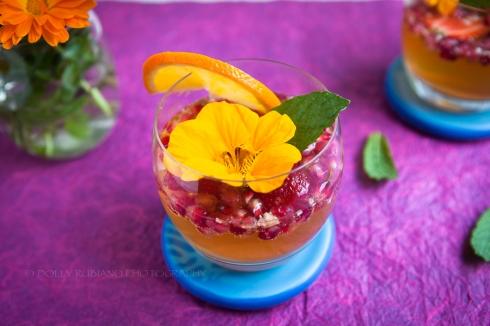 Delaney's Fruit Salad Fizz